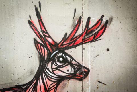 Graffiti Dzia in Bornem