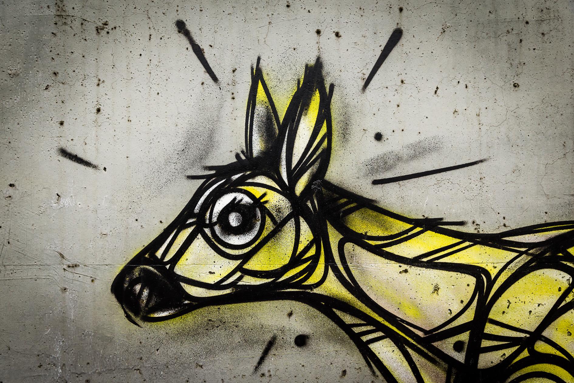 Graffiti Dzia