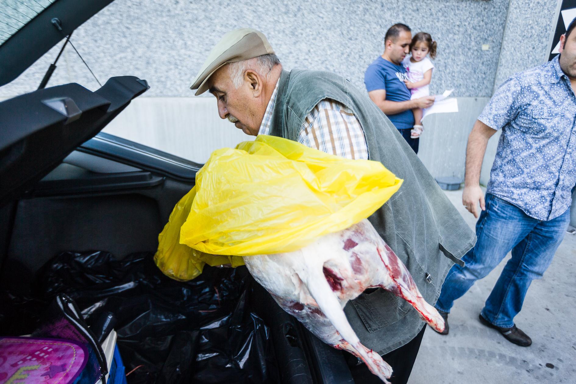 Aid el Kebir or Feast of the Sacrifice, Muslims go get their sheep at the slaughterhouse of Velzeke.