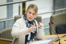 Plenaire Zitting Vlaams Parlement, Joke Schauvliege.